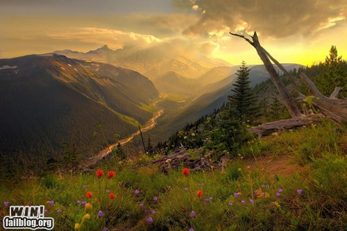 landscape mother nature ftw mount rainier pretty colors seattle mountain - 5601280256