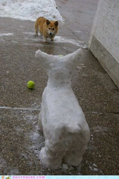 acting like animals ball confrontation corgi dogs effigy fetch fetching fight fighting Hall of Fame shouting snow snowman telling off - 5601979904
