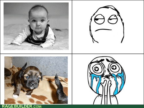 Babies cute overload puppies Rage Comics - 5601994240
