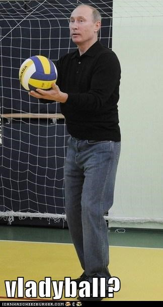 political,politics,Pundit Kitchen,Vladimir Putin,vladyball,volleyball