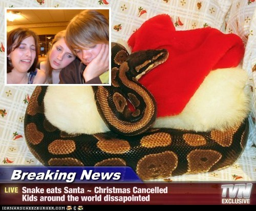 Breaking News - Snake eats Santa ~ Christmas Cancelled Kids around the world dissapointed