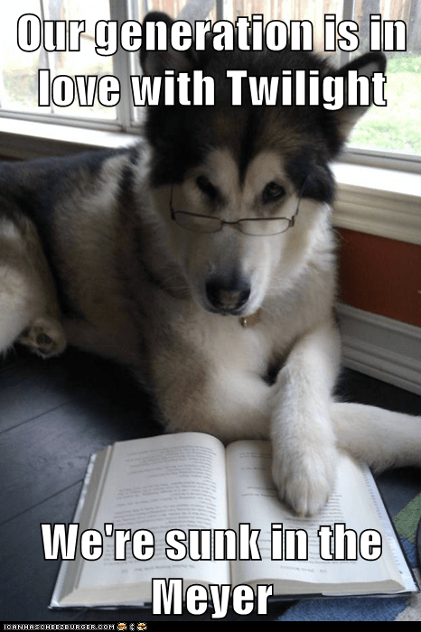 books Condescending Literary Pun Dog dogs mire puns reading stephanie meyer twilight - 5603568384