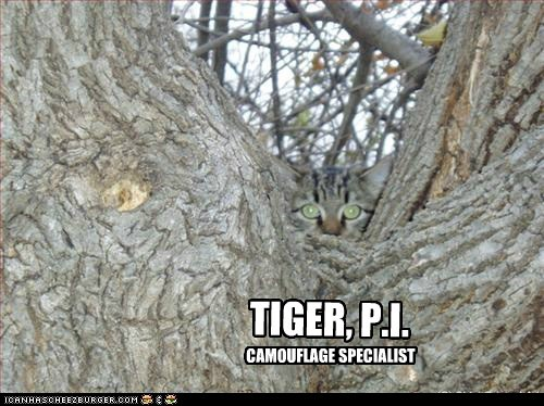 TIGER, P.I. MASTER OF DISGUISE CAMOUFLAGE SPECIALIST