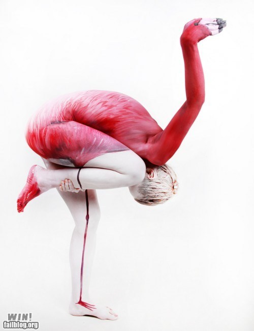 animals,art,body paint,flamingo,illusion