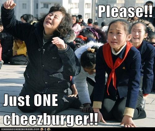 Cheezburger Image 5604786176