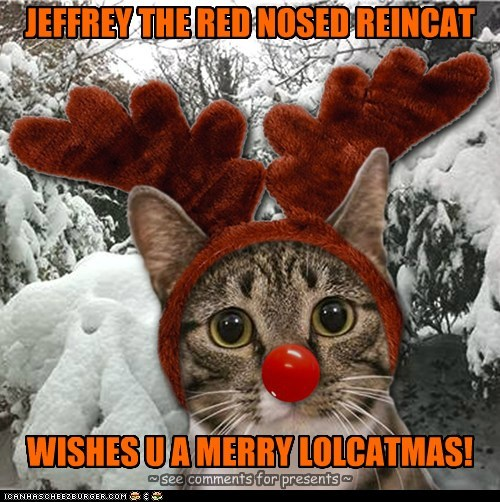 A MERRY CATMAS TO ALL OF MY CHEEZFRIENDS!!!