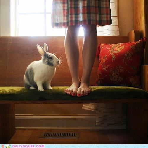 artsy bunny difference happy bunday photograph pose posed posing Sad selfish short size standing up - 5605087744