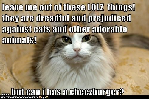 Cheezburger Image 5605117952