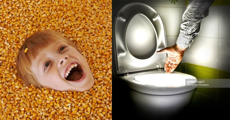wtf funny pics wtf stock photos reddit stock photos Reddit weird stock photos - 5606661