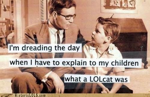 funny lolcat meme Photo - 5608000000