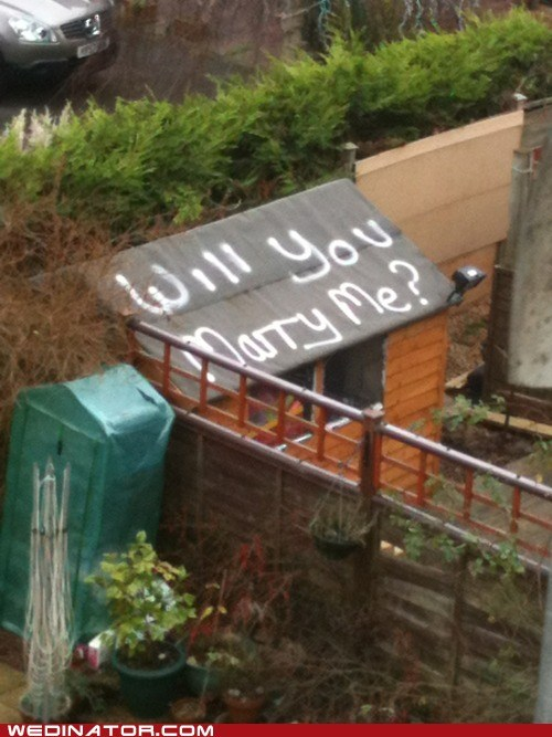 funny wedding photos proposal roof shed spray paint