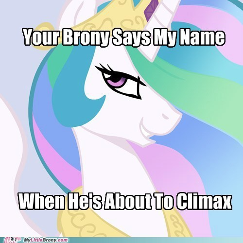 brony celestia climax feel goodtimes For the Dudes - 5613484032