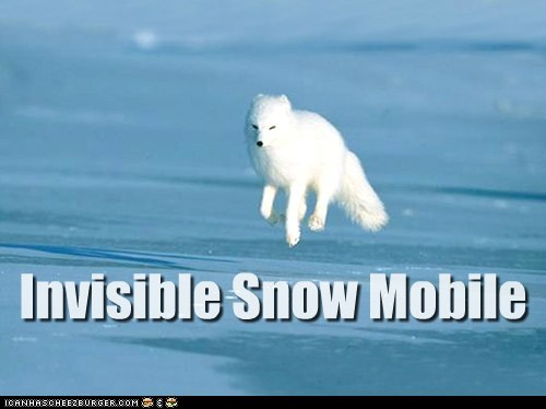 Invisible Snow Mobile