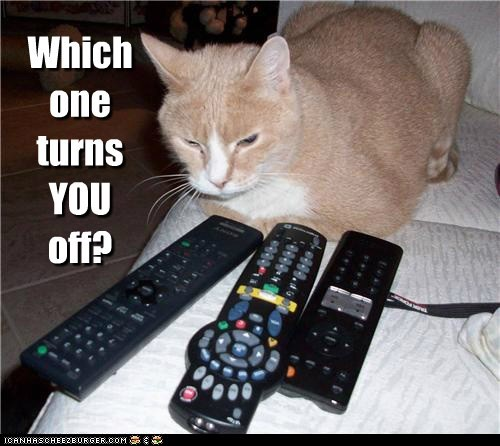 annoyed caption captioned Cats off remote controls remotes shut up turn off you - 5613599232