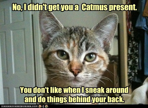 No, I didn't get you a Catmus present. You don't like when I sneak around and do things behind your back.
