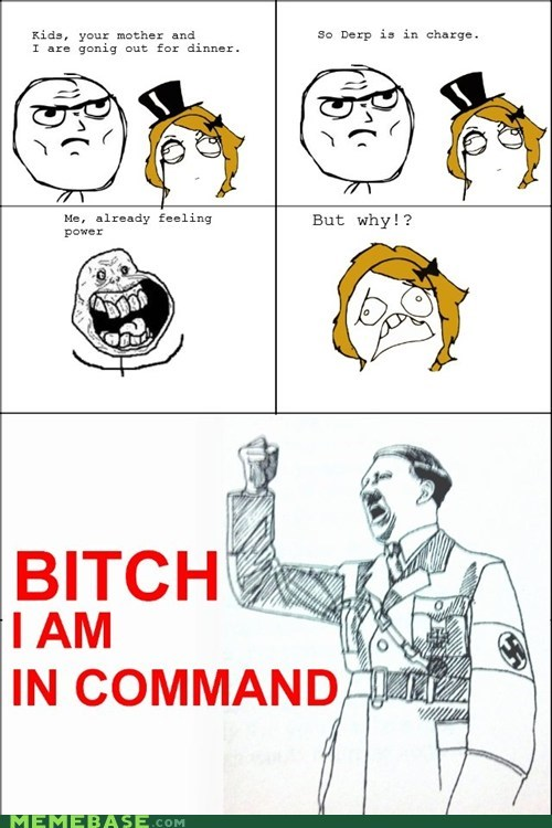 Command,dictator,hitler,in charge,Rage Comics