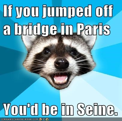 Lame Pun Coon paris seine river - 5614619648