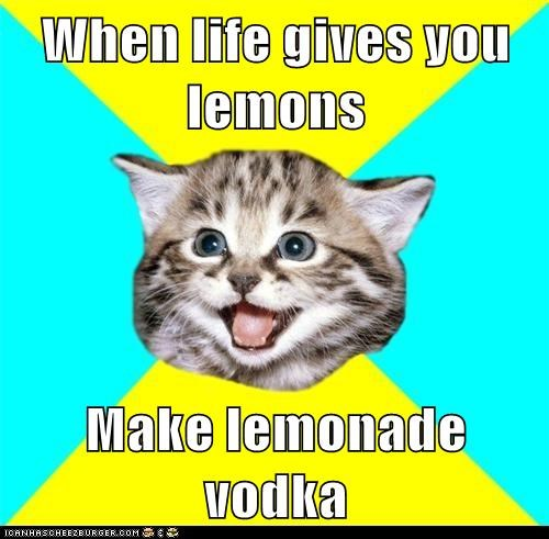 alcohol,Cats,drinking,happy,Happy Kitten,kitten,lemonade,lemons,vodka
