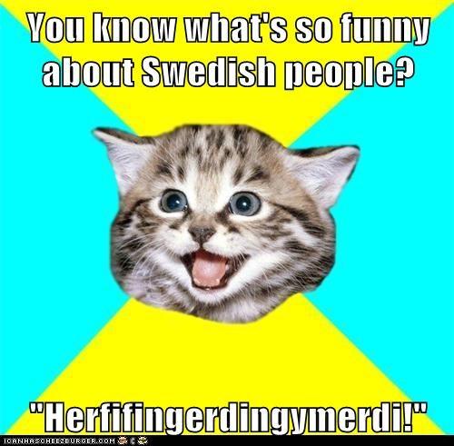 Cats gibberish Happy Kitten language lolwat nonsense swedish - 5614801408