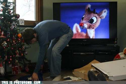 best of week christmas rudolph rudolph the red-nosed reindeer TV what an ass - 5615011840