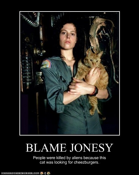BLAME JONESY People were killed by aliens because this cat was looking for cheezburgers.
