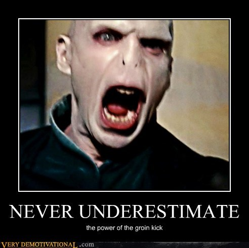 groin kick hilarious voldemort wtf yelling - 5615650304