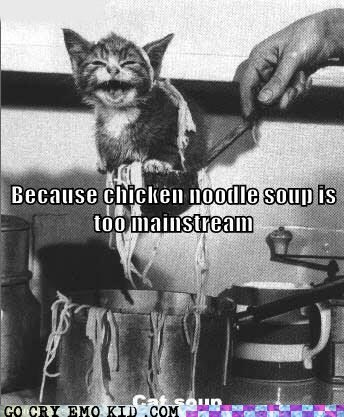 cat chicken cooking kitty soup weird kid