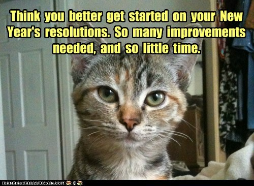 Think you better get started on your New Year's resolutions. So many improvements needed, and so little time.