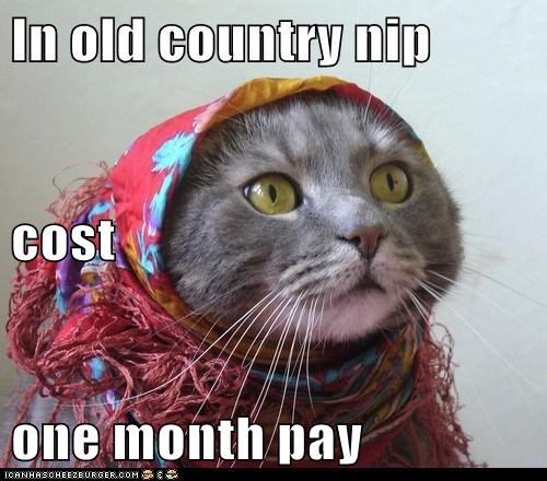 In old country nip cost one month pay