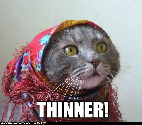 animals,cat,gypsy,gypsy woman,I Can Has Cheezburger,scarf,stephen king,thinner