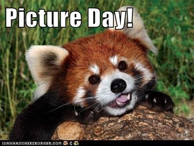 caption,captioned,cute,picture day,pictures,red pandas,smile,smiling