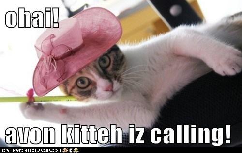 avon cat hat I Can Has Cheezburger makeup - 5618105856