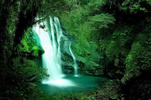 awesome beautiful Forest getaways green unknown location waterfall - 5618299392