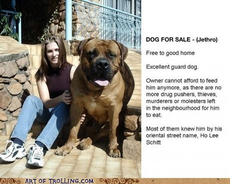 dogs,for sale,huge,scary,shoppers beware