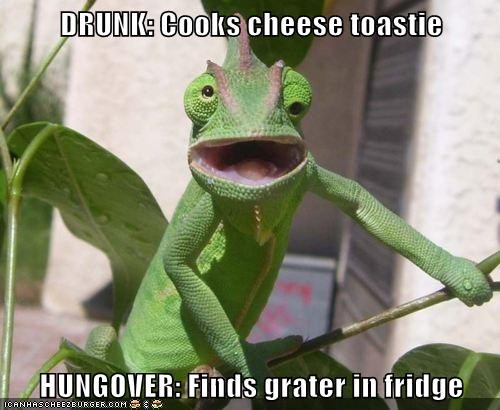 Cheezburger Image 5618562048