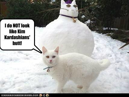 I do NOT look like Kim Kardashians' butt!