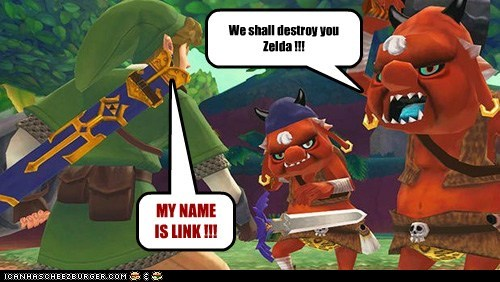 We shall destroy you Zelda !!! MY NAME IS LINK !!!