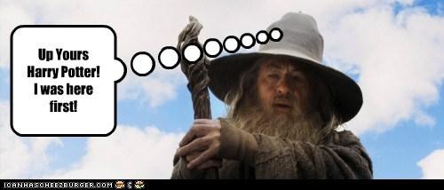 first gandalf harry ian mckellan The Hobbit wizards - 5619449344