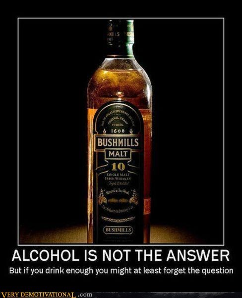 alcohol answer booze drunk hilarious question - 5619935488