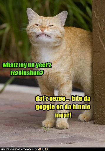 for 2012 whatz my nu yeer'z rezolushun? dat'z eezee... bite da goggie on da hinnie moar!