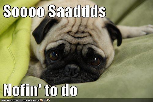 bummer pug Sad thats-a-bummber-man - 5620542208