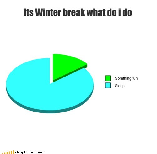 fun,holiday,Pie Chart,school,sleep,winter break