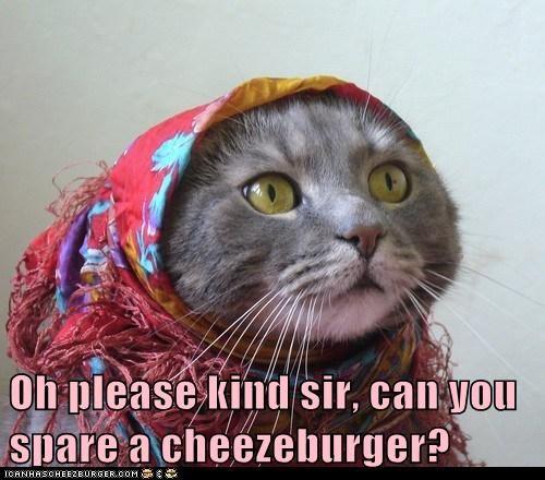 Cheezburger Image 5620904448
