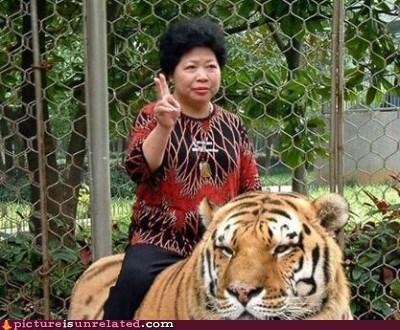 giddyup tiger wtf
