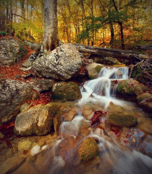 autumn europe Forest getaways Hall of Fame ukraine user submitted waterfall - 5621557504