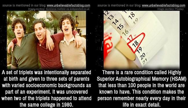 weird interesting facts