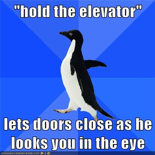 elevator,eww,eye contact,socially awkward penguin