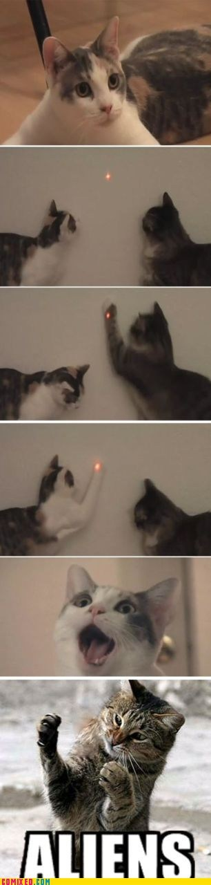 Aliens animals Cats lasers meme - 5622169088