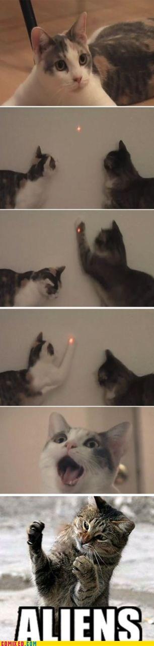 Aliens animals Cats lasers meme - 5622169088