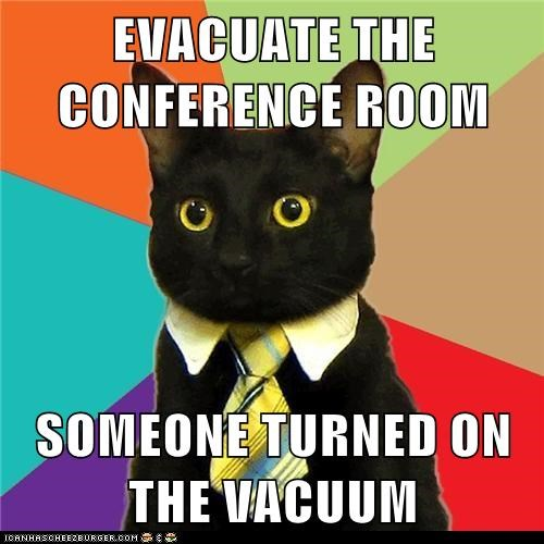 business,Business Cat,conference room,evacuate,Hall of Fame,offices,scared,vacuum,vacuum cleaner,work